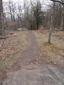 beginning of the sleepy hollow trail and the escarpment trail