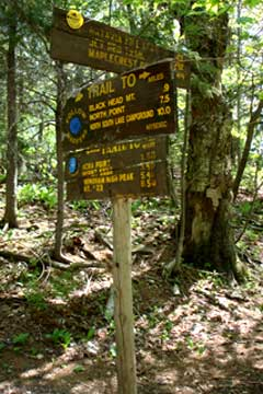 The trail junction to the col between blackhead mountain and black dome mountain