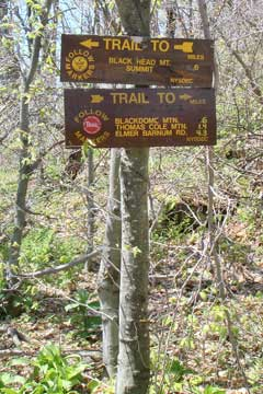 sign at Lockwood Gap between Blackhead Mountain and Black Dome Mountain