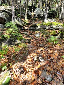 steep trail down into Dutcher's Notch from Arizona Mountain in the Catskill Mountains