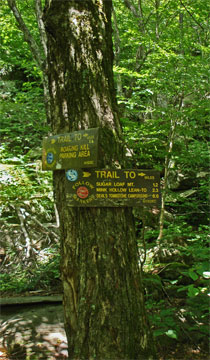 trail junction to Sugarloaf Mountain