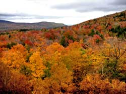 progress of the 2018 fall foliage in the Catskill Mountains